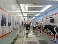The Exhibition Udmurtia
